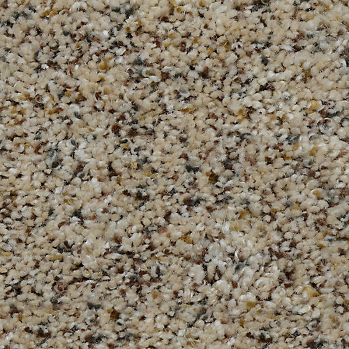 Beach Club I Jessup 12 ft. x Custom Length Textured Carpet