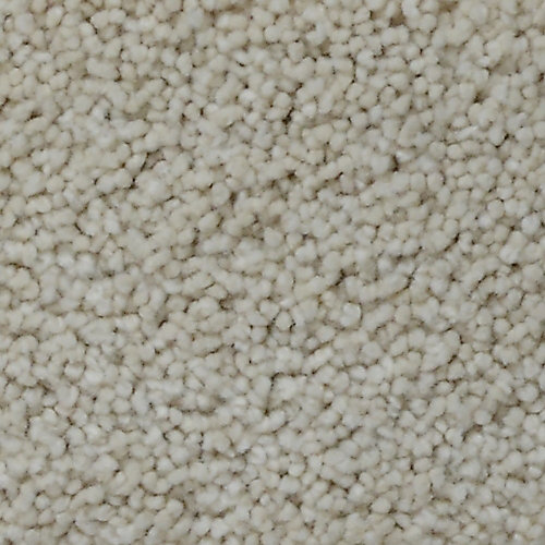 Stargazer Gibbons 12 ft. x Custom Length Textured Carpet
