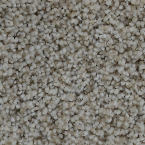 Stargazer Percy 12 ft. x Custom Length Textured Carpet