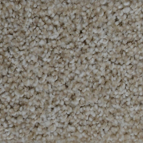Stargazer Macey 12 ft. x Custom Length Textured Carpet