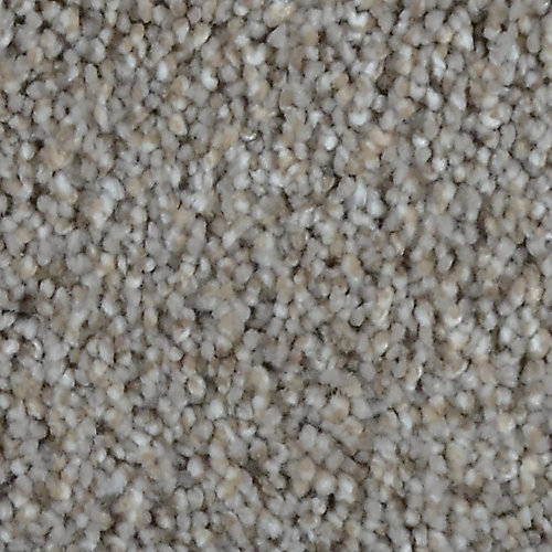 Stargazer Sinclair 12 ft. x Custom Length Textured Carpet