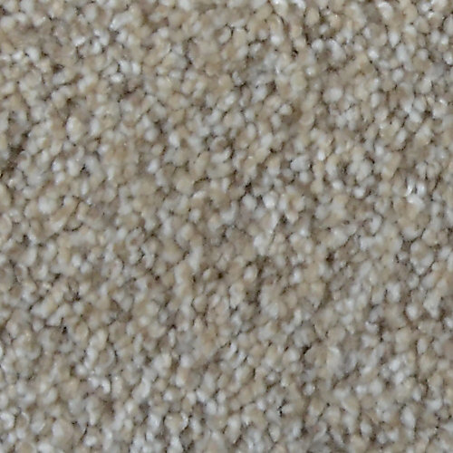 Stargazer Arbor 12 ft. x Custom Length Textured Carpet