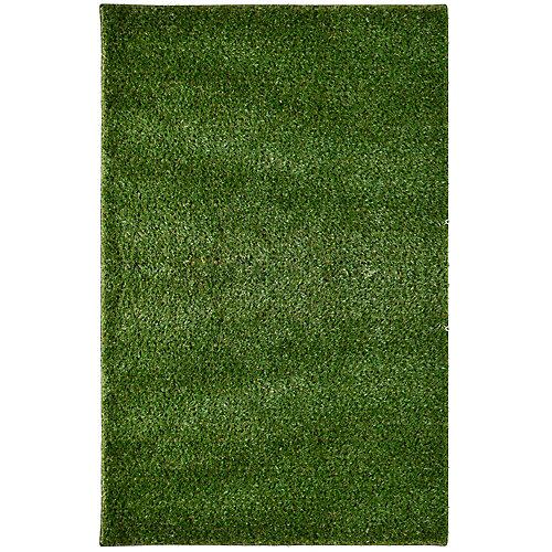 Lanart Rug tapis gazon à poils longs, 12 pi X 72 pi