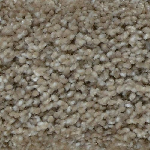 Great Moments II (T) Sparks 12 ft. x Custom Length Textured Carpet