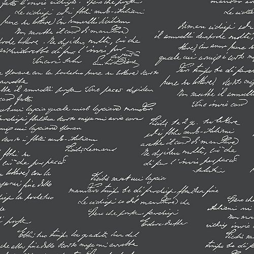 Magnolia Home - Remarquable - Noir Papier peint amovible