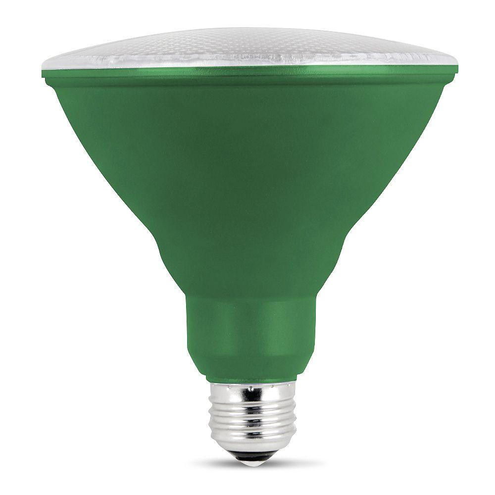 Feit Electric Ampoule DEL de la croissance des plantes PAR38 équivalente  de 75 watts, Base Moyen E26 d'usage intérieur, effet de Serre du spectre complet