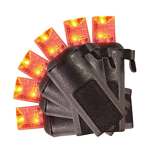 Concave LED Battery Operated Lights with Timer (Assorted 20-Pack)