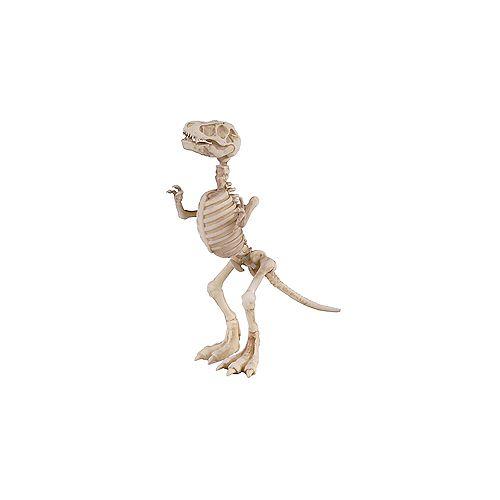 Mini Adjustable Skeletons (Assorted Styles)