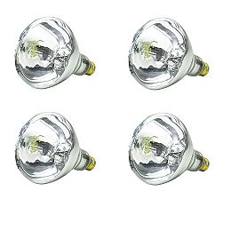 250W  BR40 Incandescent Heat Lamp (4-pack)