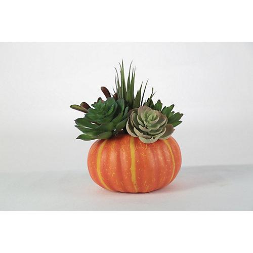 Arrangement floral fausse citrouille avec faux cactus, 6 po, modèles variés