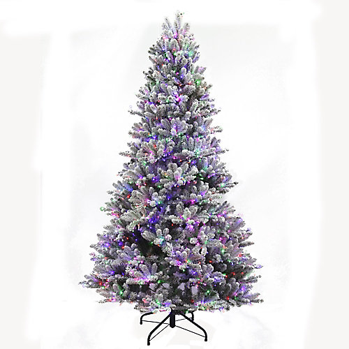 Starry-Light 7.5 ft. 2000 Twinkling Multi-Colour LED-Lit Fraser Christmas Tree