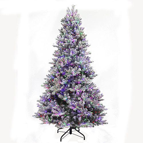 Starry-Light 7.5 ft. 2000 Twinkling Multi-Colour LED-Lit Fraser Christmas Tree