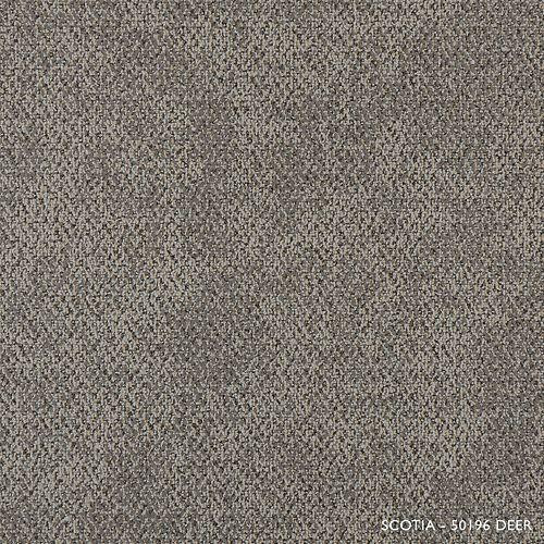Carreau de tapis-Scotia coleur cerf (21.53 SF)