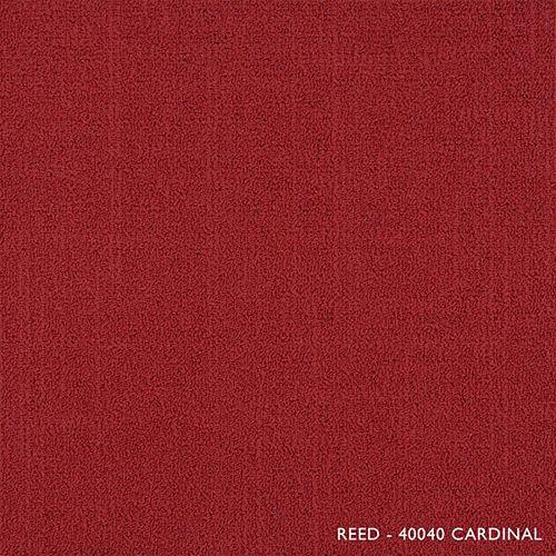 Astella Reed Cardinal Modular Carpet Tile (21.53 sq. ft. /case)