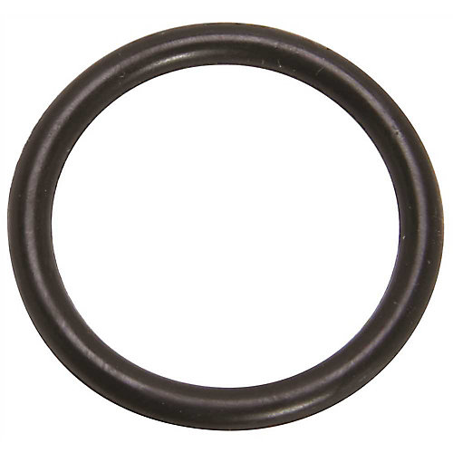 Proplus Precision Moulded O-Ring #22