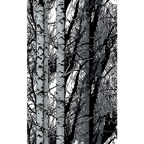 346-0611 Home Decor Self Adhesive Film 17-inch x 78-inch Birch Woods - (2-Pack)