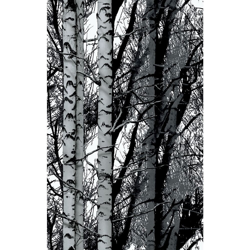 D-C-Fix 346-0611 Home Decor Self Adhesive Film 17-inch x 78-inch Birch Woods - (2-Pack)