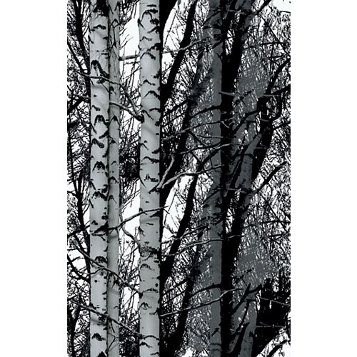334-8028 Home Decor Premium Static Cling Window Film 26-inch x 59-inch Birch Woods