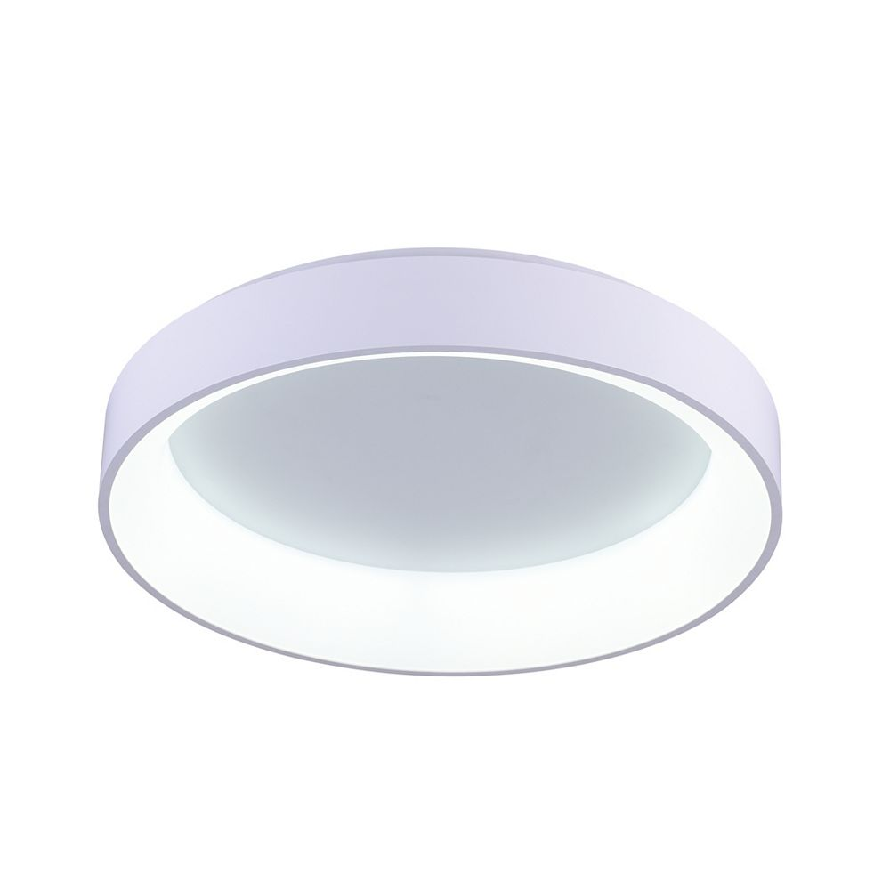CWI Lighting Arenal 24-inch LED Flush Mount with White Finish