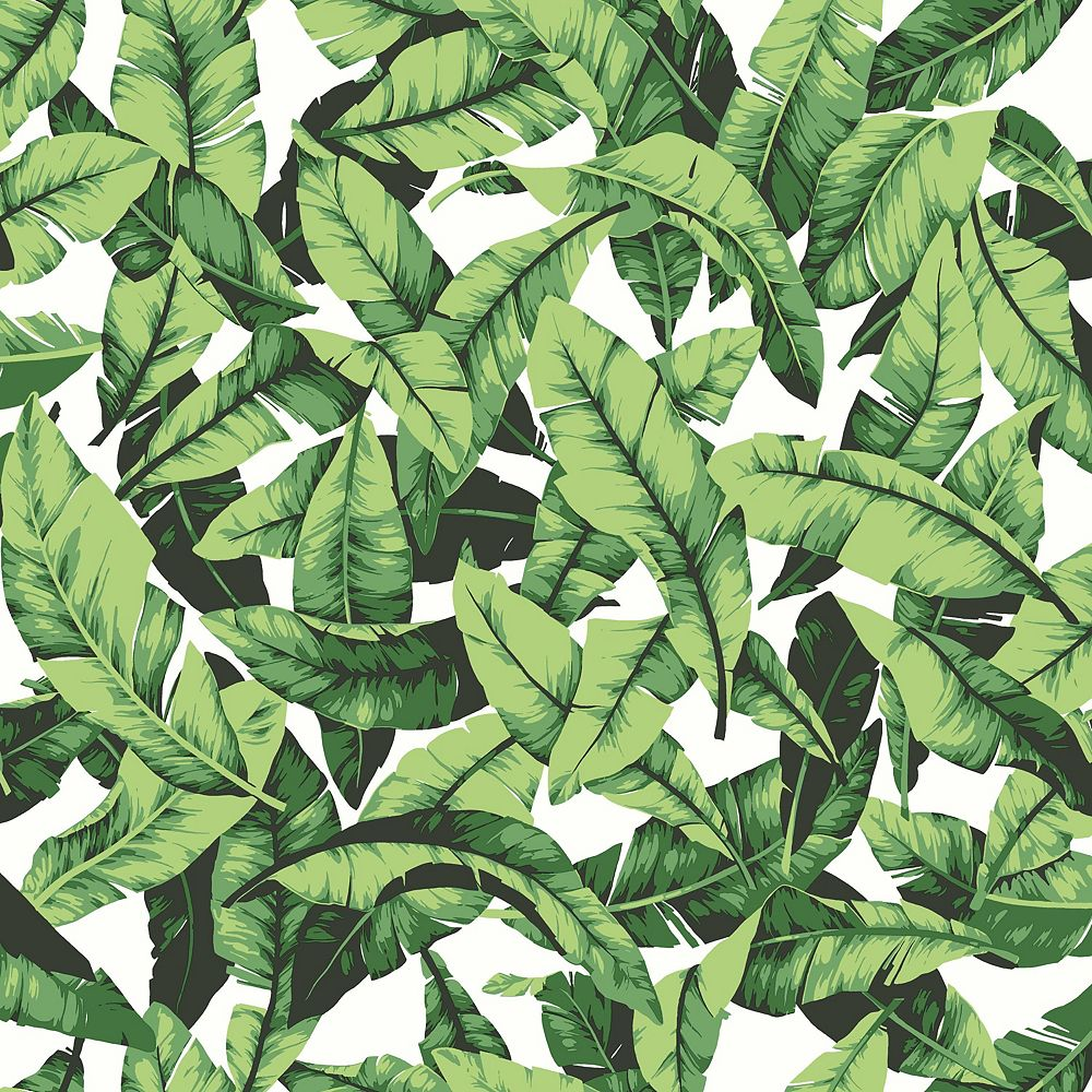 Roommates Palm Leaf Peel Stick Wallpaper The Home Depot Canada