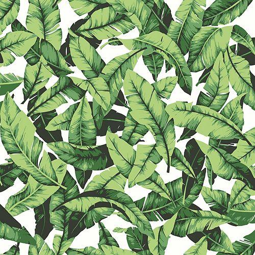 Palm Leaf Peel & Stick Wallpaper
