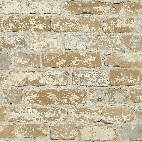 Stuccoed Brown Brick Peel and Stick Wallpaper