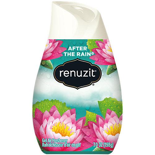 Renuzit Adjustable After the Rain