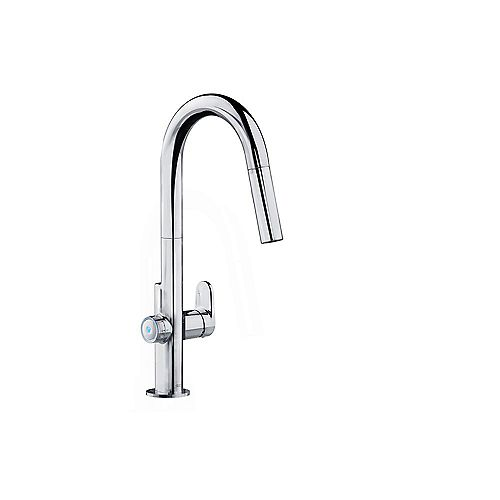 Beale MeasureFill Single-Handle Pull-Down Sprayer Kitchen Faucet in Chrome