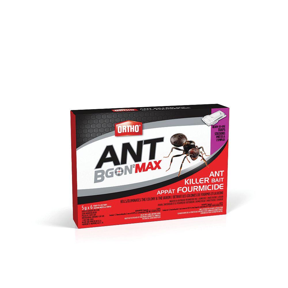 Appât fourmicide Ant B Gon Max, paquet de 10