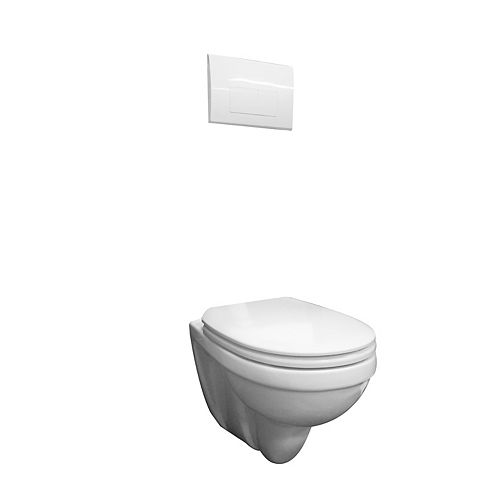 Concealed tank wall hung dual flush toilet with white push button