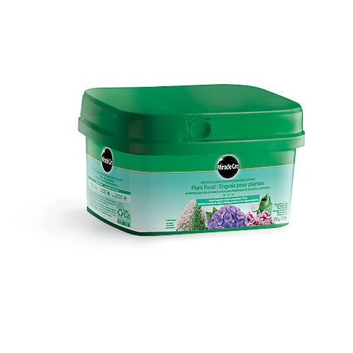 Engrais Pour Plants Hydrosoluble Pour Arbres À Feuillage Persistant Et Plantes Acidiphiles 28-10-10