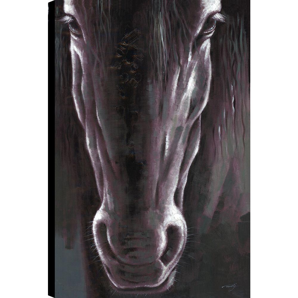 Art Maison Canada Black Beauty, Animal Natue Art, Canvas Print mur Art Décor 36 X 24 prêt à accrocher