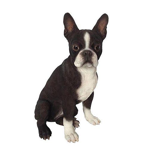 Hi-Line Gift Statue d'un terrier de Boston