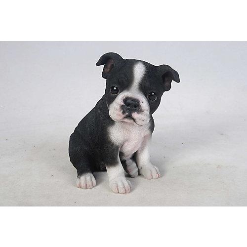 Boston Terrier Puppy Statue