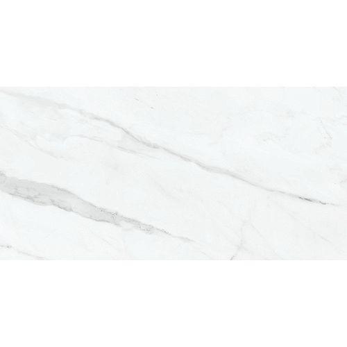 Carreaux, 12 po x 24 po, porcelaine mate pressée HD, Carrara Nevoso, 15,5 pi2/caisse