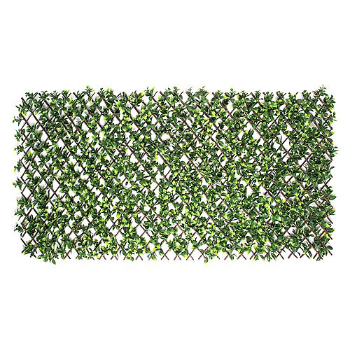 Gardenia Leaf Expandable Willow Trellis