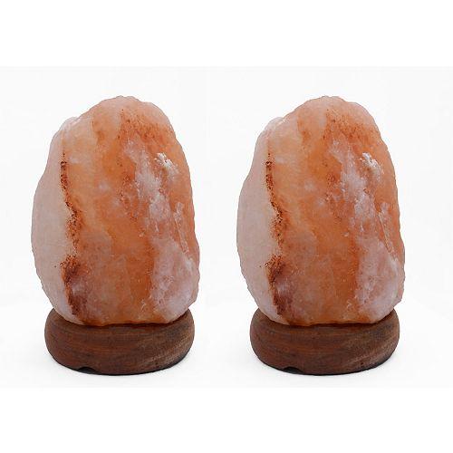8 pouce Lampe de sel en forme naturelle Himalayan de 1.8 avec gradateur - Ensemble de 2