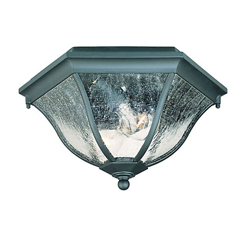 Flushmount Collection Ceiling-Mount 2-Light Outdoor Fixture in Matte Black
