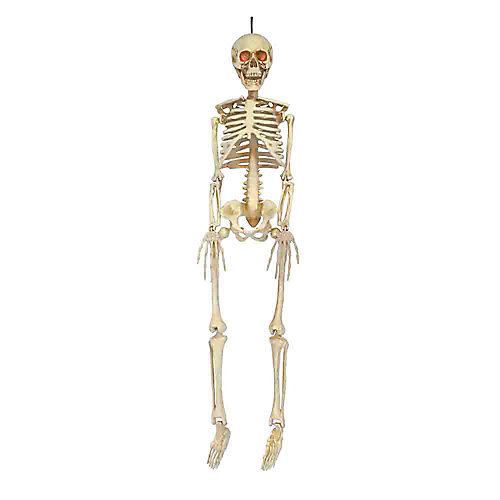 36in. LED Hanging Skeleton