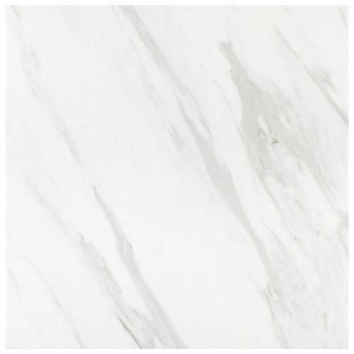 Eterno Carrara 9-3/4-inch x 9-3/4-inch Porcelain Floor and Wall Tile (11.11 sq. ft. / case)