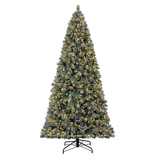 12 ft. 1,300-Light Warm White LED Pre-Lit Sparkling Pine Frosted Quick Set Christmas Tree
