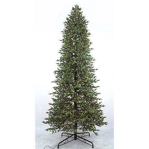12 ft. 4000-Light Norway Spruce Mircro Dot Warm White LED Pre-Lit Christmas Tree