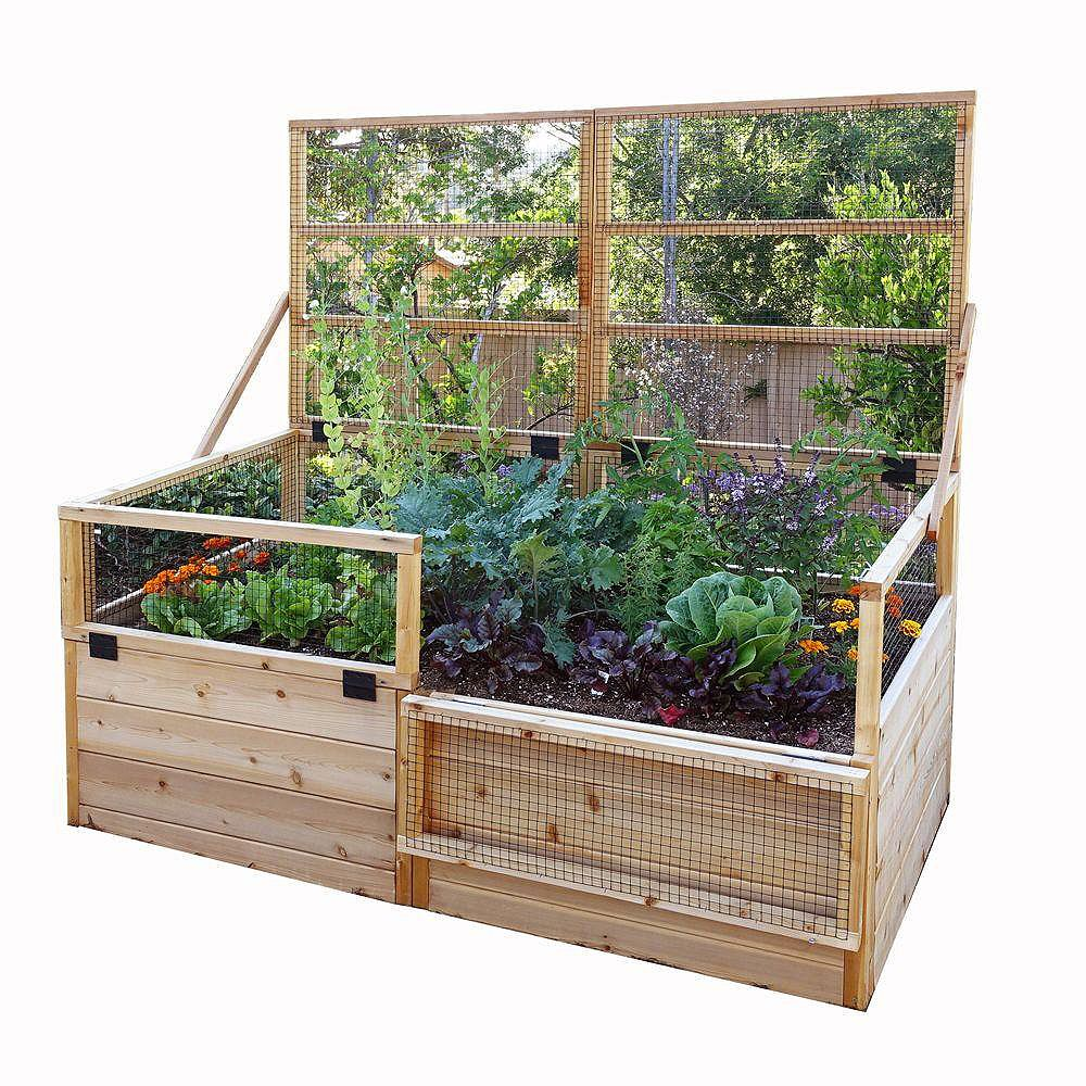 Outdoor Living Today Jardinière surélevée 6 pi x 3 pi en cèdre avec treillis rabattable
