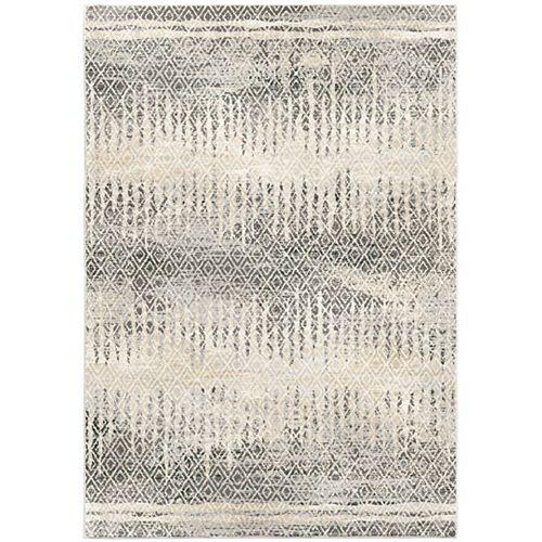 Pinnacle gris nuage tapis intérieur 7 pi 10 po x 10 pi