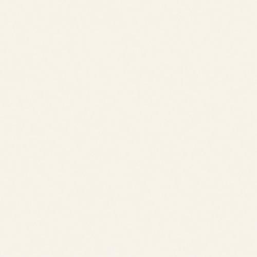 96-inch x 48-inch. Laminate Sheet in Antique White AbsoluteMatte