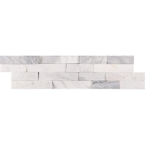 Carreaux de marbre naturel pour murs Alaska fini multiple, panneaux, 6 po x 24 po (60  pi ca/palette)