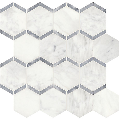 Bianco 3-inch Framed Hexagon Polished Marble Mosaics