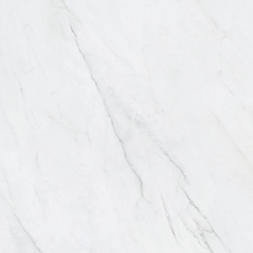 Vera Carrara 24-inch x 24-inch Polished Rectified Porcelain Tile
