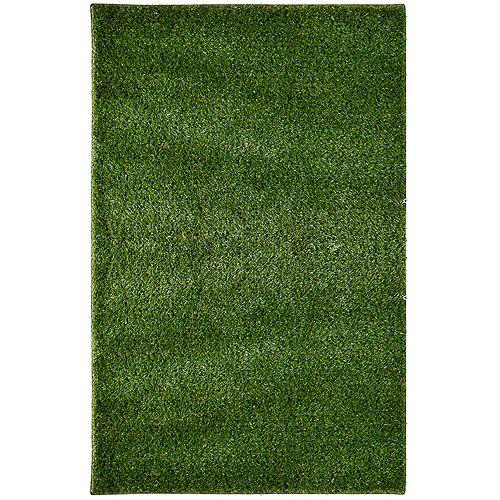 Tapis rectangulaire, 6 pi x 18 pi, gazon, vert