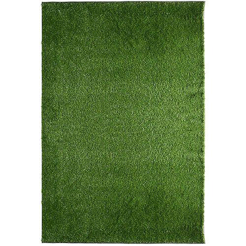 Tapis rectangulaire, 12 pi x 17 pi, gazon Deluxe, vert